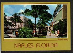 FL Business Section NAPLES ON THE GULF FLORIDA Postcard