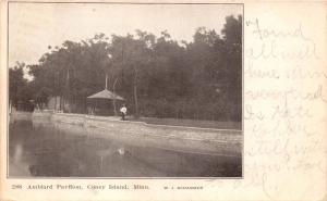 CONEY ISLAND MINNESOTA EMILE AMBLARD PAVILION~W J SCHARMER PUBL POSTCARD 1909