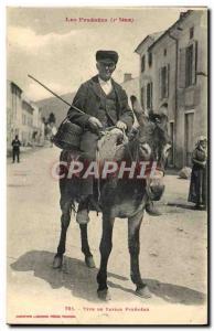 Old Postcard Folklore Pyrenees peasant type pyreneen Donkey Mule