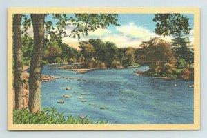 River North Carolina NC Postcard
