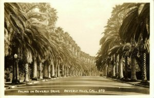 Beverly Hills, Cal., Palms on Beverly Drive (1930s) RPPC Postcard
