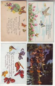 P196 JLs 4 postcard 3 old butterflies