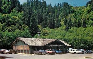 Mapleton OR~Dodge Dart~El Camino~Gingerbread Village Restaurant in Forest~1960s