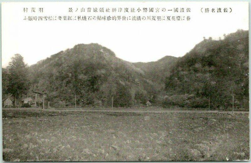 Vintage JAPAN Japanese Postcard Farm Field View c1930s Unused