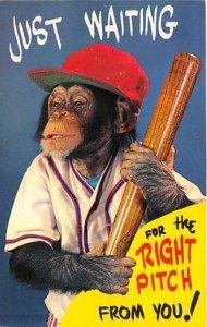 Baseball, Base Ball, Comic Unused