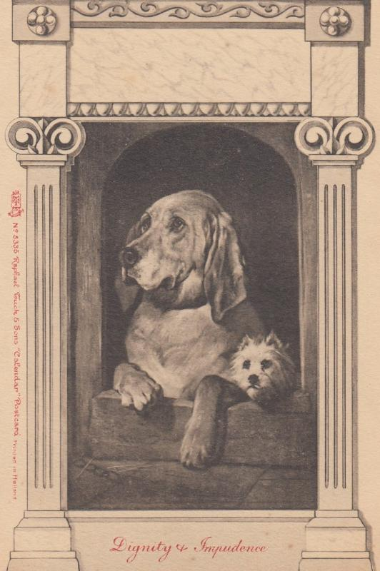Dignity & Impudence ,2 dogs , 1901-07 ; TUCK 5335