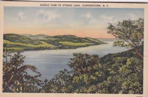 New York Cooperstown Otsego Lake Scenic View