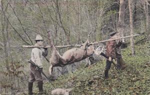 Deer Hunters , Canada , 00-10s