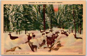 1940s Idaho Postcard Deer Scene Denizens of the Pacific Northwest Forest Linen