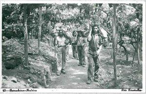 02394 ETHNIC vintage postcard: PORTUGAL - MADEIRA