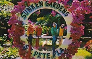Florida St Petersburg Macaws At Sunken Gardens