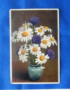 Daisies In Vase Old Postcard Floral Flowers