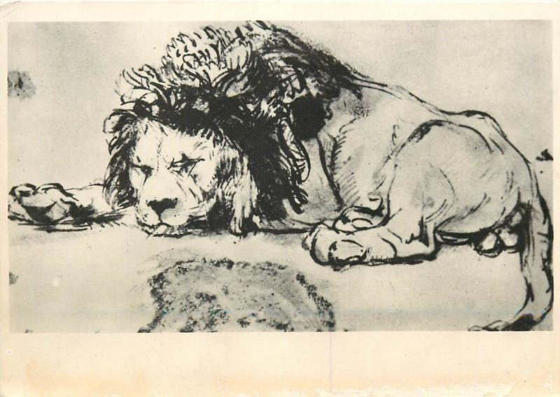 Postcard animals topic animaux art Rembrandt - Lion leon