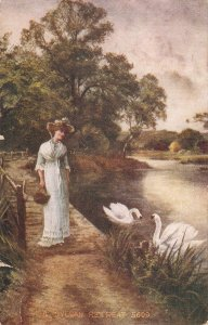 Lady and swans. A Sylvan Retreat Nie vintage American postcard