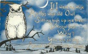 Artist Impression 1912 Postcard Owl night Scene greeting 11298