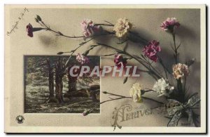 Fantasy - Party - Birthday - 1915 - Flowers - Carnation - Old Postcard