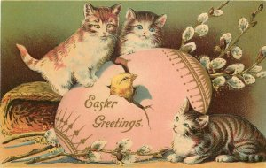 c1910 Easter Cat Postcard; Cute Kittens Keen on Chick Hatching from Big Pink Egg
