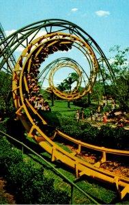Florida Tampa Busch Gardens The Python Roller Coaster