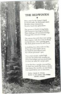 The Redwoods, Poem by Joseph Strauss Builder of the Golden Gate Bridge RPPC