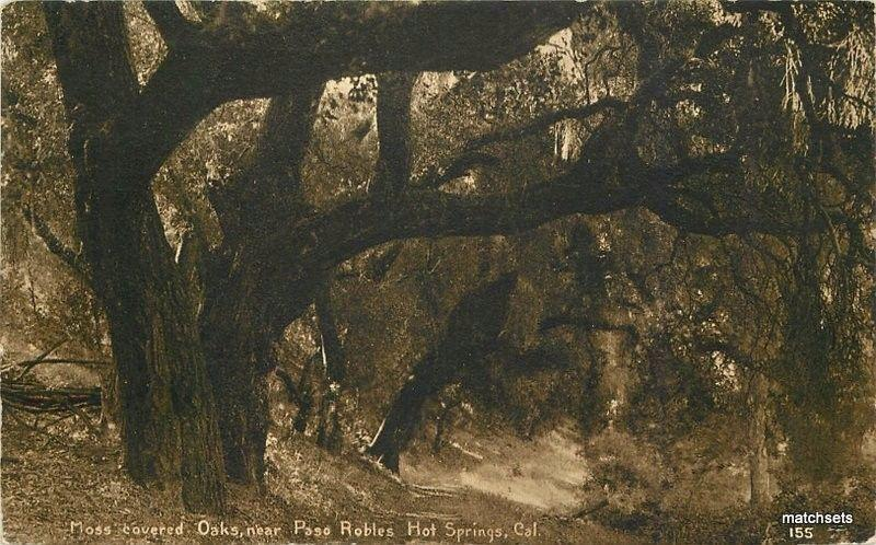 1912 Moss Oak Paso Robles Hot Springs California postcard 970