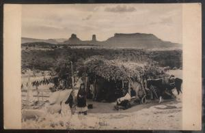 Mint USA RPPC Postcard Native American Indian Navaho Summer Hogan