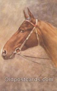 Artist George Rankin Horse Postcard Postcards  Artist George Rankin