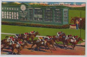Hialeah Race Track, Miami FL