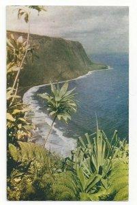 WAIPIO VALLEY, Hawaii, 1940-60s; Bird's Eye View
