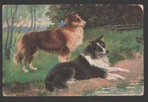 107511 COLLIE w/ Blue Bow by SJch Vintage Color PC