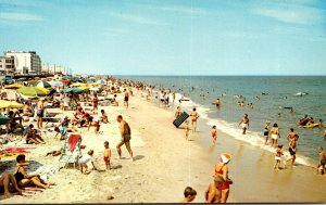 Delaware Rehoboth Beach Looking North