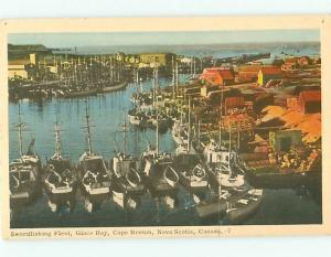 Vintage Post Card Swordfishing Fleet Glace Bay Cape Breton Nova Canada  # 3841
