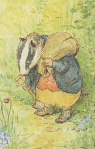The Tale Of Mrs Tod 1912 Beatrix Potter Book Postcard
