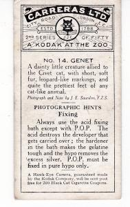 Cigarette Cards Carreras A Kodak at the Zoo 2nd series No 14 Genet