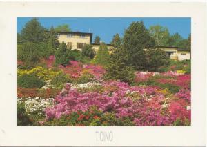 TICINO, Parco Botanico San Grato, Carona, unused Postcard