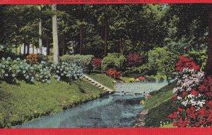 Waterfalls In Henry Timrod Park, FLORENCE, South Carolina, PU-1951