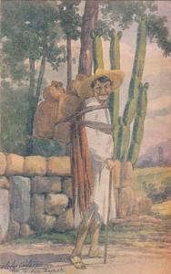 AS: Tipo Indigna, Mexico, Zapata, 00-10s