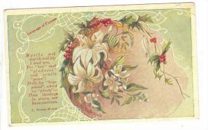 Language Of Flowers, Poem From C. Preston-Wynne, 1910-1920s