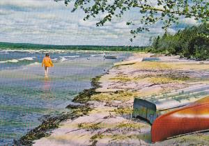 Canada Beach Scene Lesser Slave Lake Alberta