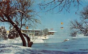 Idaho Falls Idaho~Driftwood Falls View Motel on River Parkway~1960s Postcard