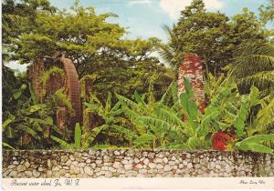 Post Card Jamaica Ancient Water Wheel Tryall Golf Course
