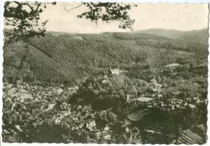 Germany, Schwarzburg, Blick vom Trippstein, used real photo Postcard