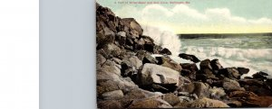 Maine Monhegan Part Of White Head and Gull Cove 1909