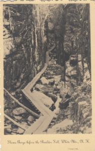 RP; Franconia Notch , N.H. ; 30-40s; Flume Gorge