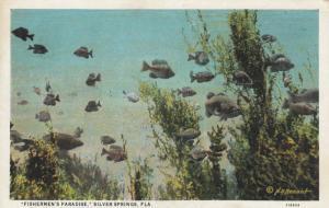 SILVER SPRINGS, Florida, 1900-1910's; Fishermen's Paradise