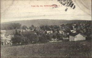 Narrowsburg NY From the Hill c1910 Postcard
