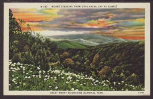 Mount Sterling From Cove Creek Gap,Smoky Mountains Postcard