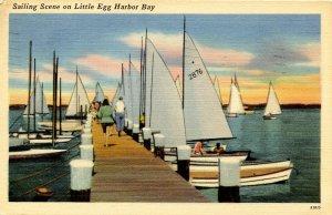 NJ - Little Egg Harbor Bay. Sailing Scene