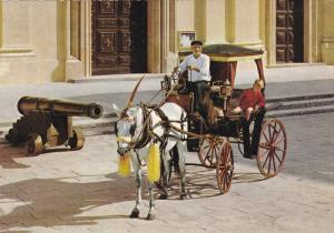 Maltese Karozzin, Cannon, MALTA, 50-70's