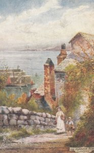 CLOVELLY, Devon, England, 00-10s ; The Harbour Road ; TUCK 7233