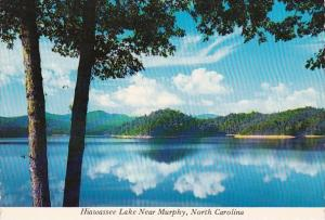 North Carolina Murphy Hiawassee Lake